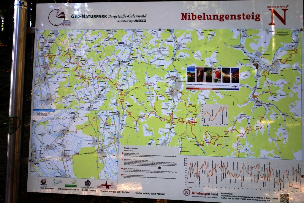 Nibelungenmarathon_10