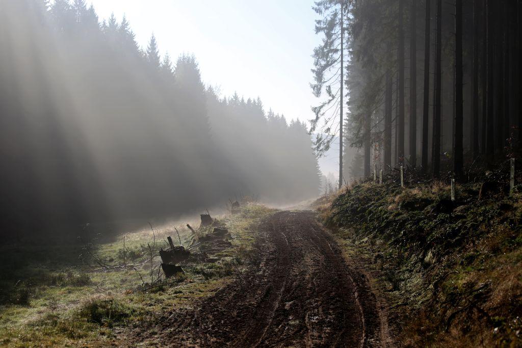 Nibelungenmarathon_44