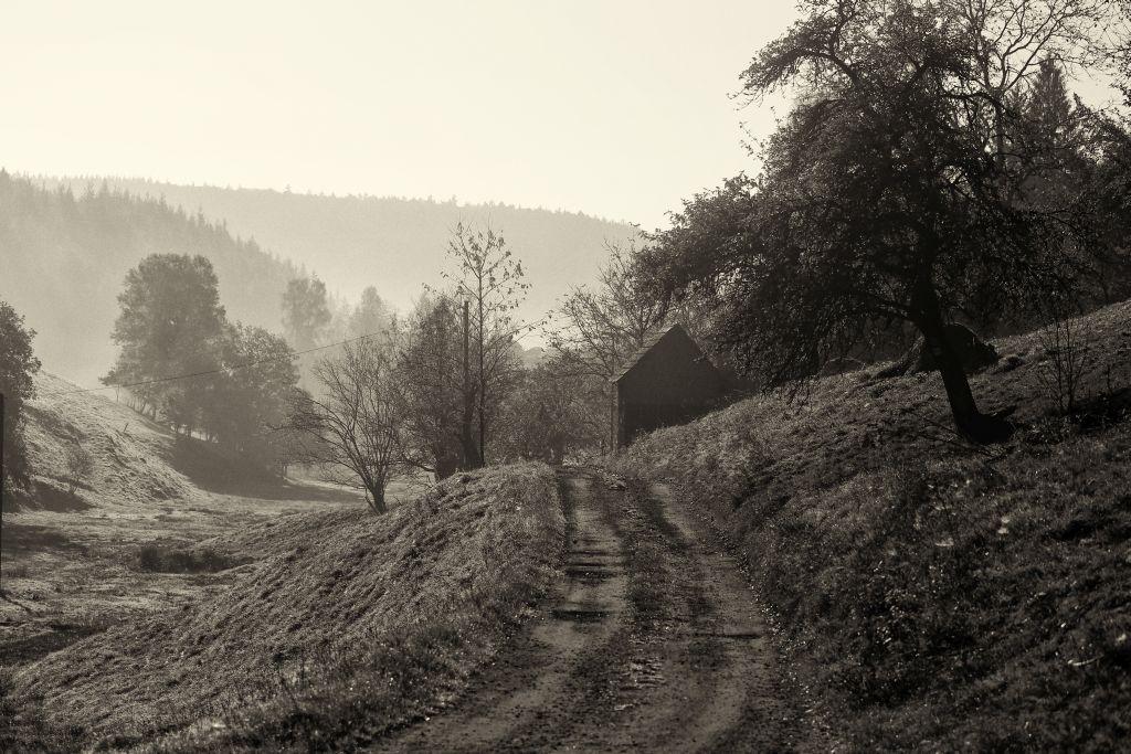 Nibelungenmarathon_46