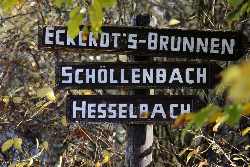 Nibelungenmarathon_49