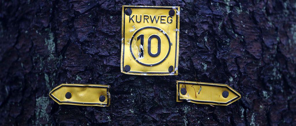 TaunushöhenwegTrail3_49