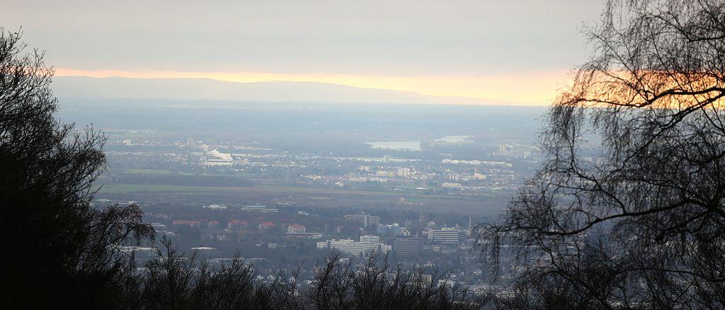 TaunushöhenwegTrail3_51