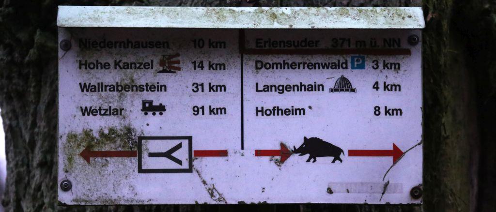 TaunushöhenwegTrail3_26