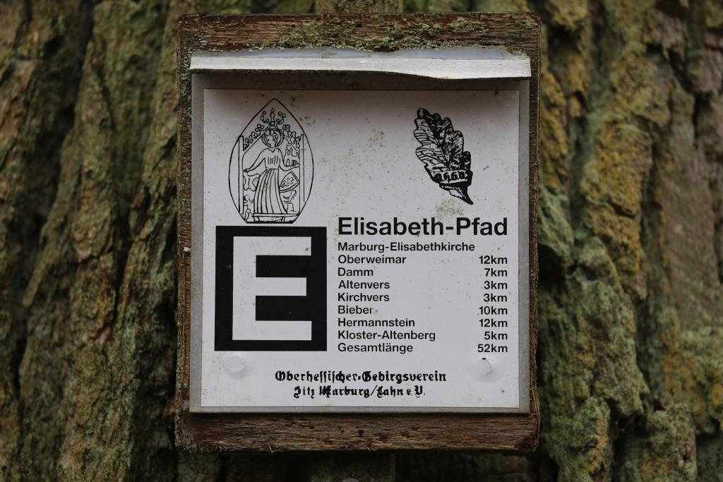 ElisabethenpfadT4_32
