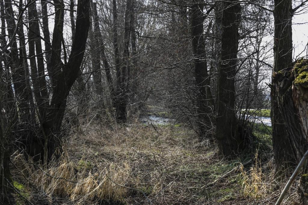 HW19_Trail5_40