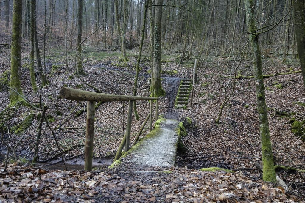 HW19_Trail5_5