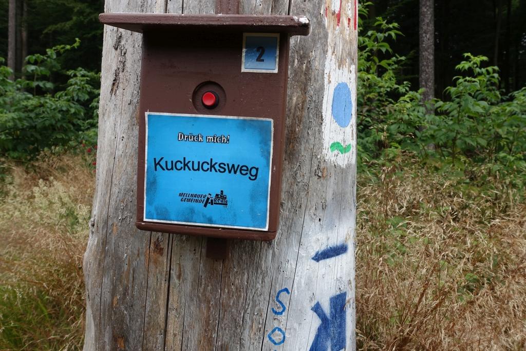 Burgwaldpfad__16