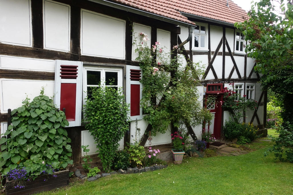 Burgwaldpfad__17