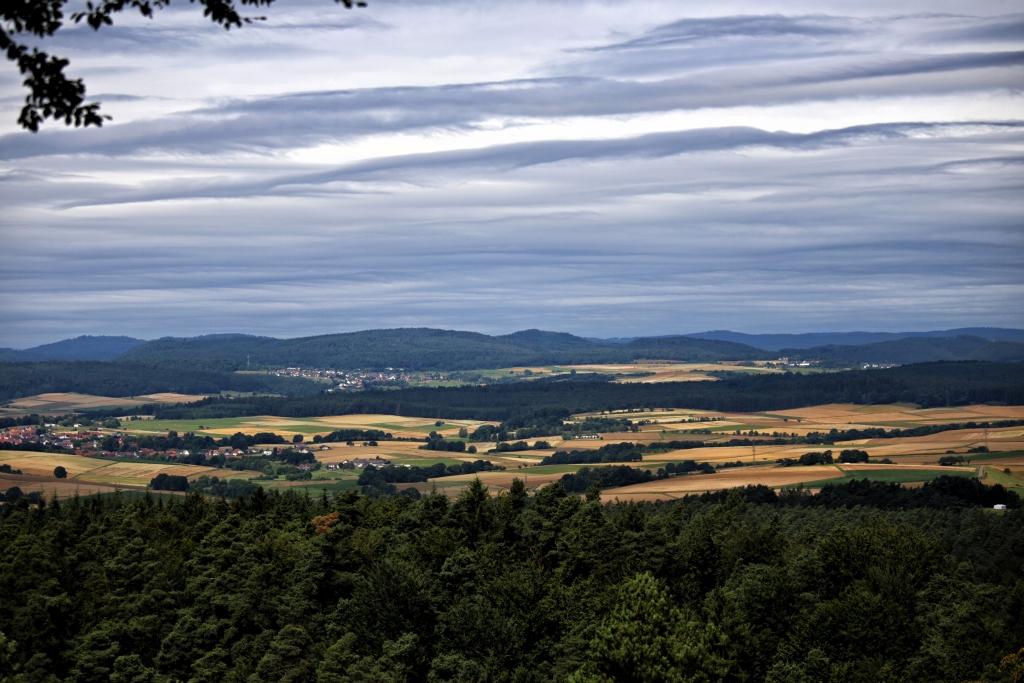 Burgwaldpfad__57
