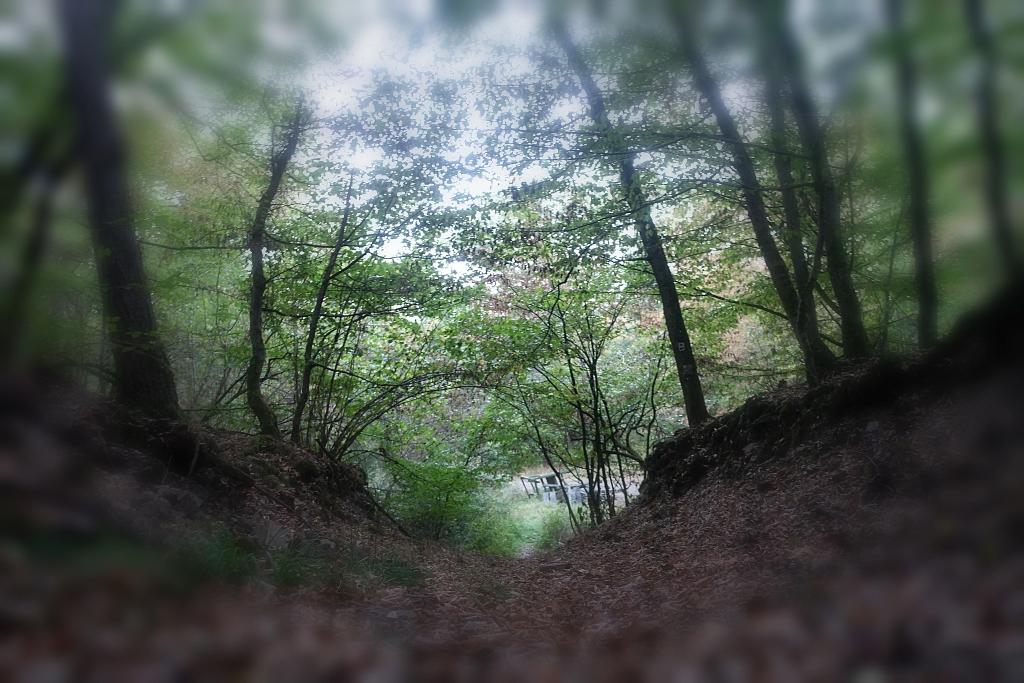 lahnwanderweg-trail-4__2