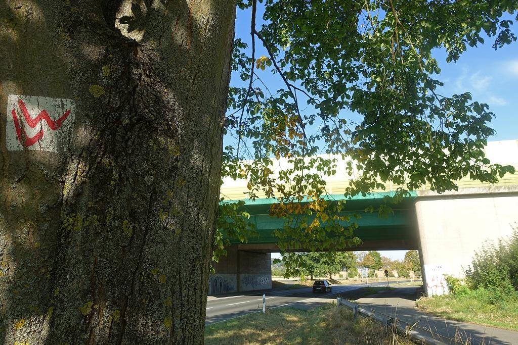 lahnwanderweg-trail-4__32