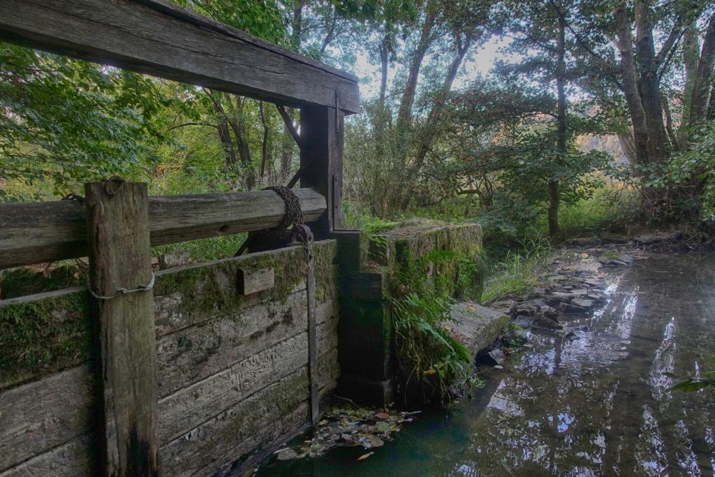 lahnwanderweg-trail-4__6