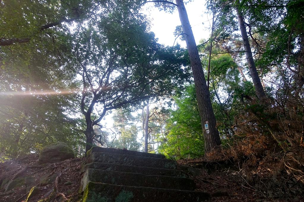 lahnwanderweg_trail3__14