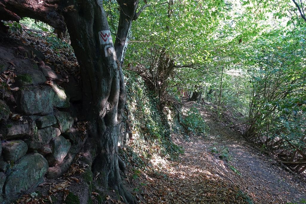 lahnwanderweg_trail3__17