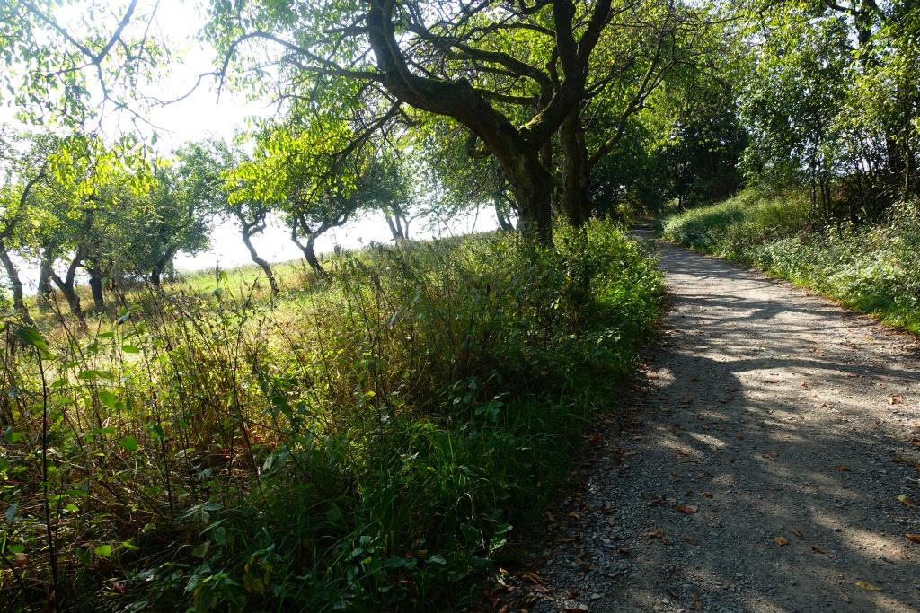 lahnwanderweg_trail3__42