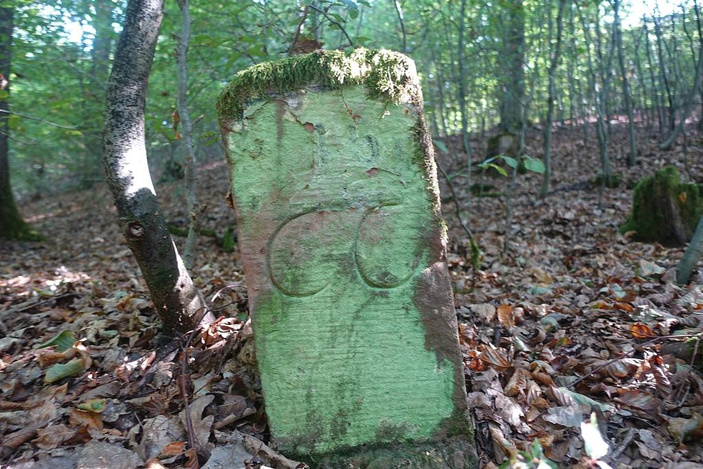lahnwanderweg_trail3__44