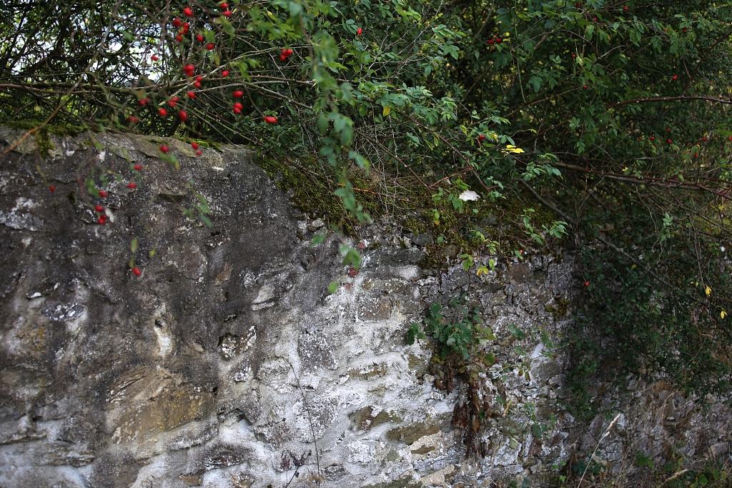 lahnwanderweg-trail5__67