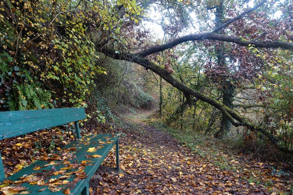 lahnwanderweg_trail6_14