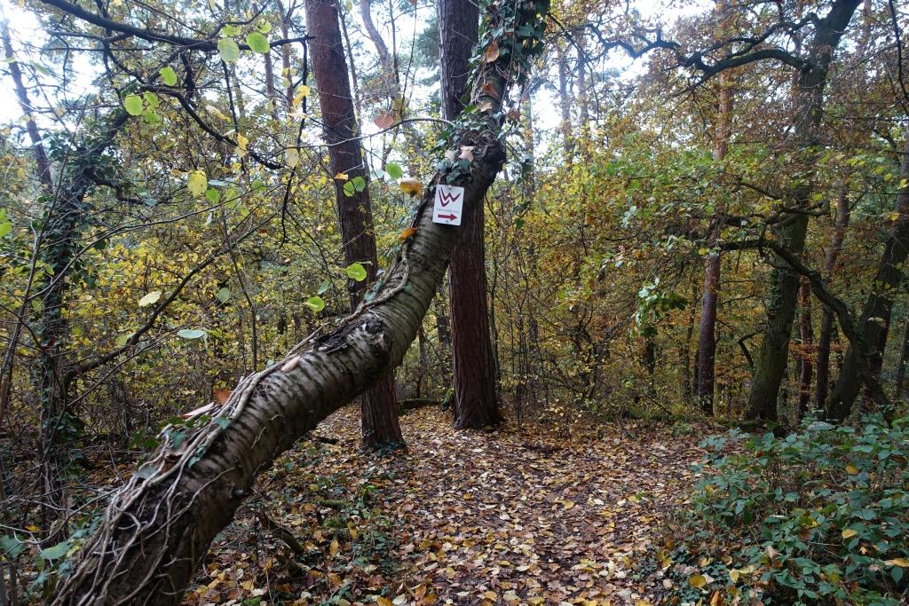 lahnwanderweg_trail6_20