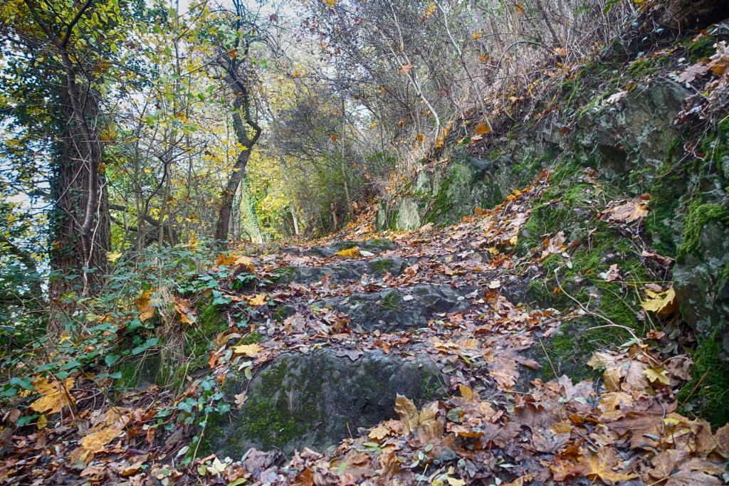 lahnwanderweg_trail6_21