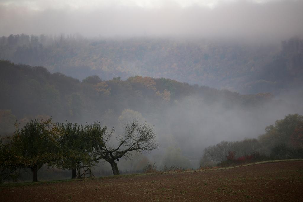 lahnwanderweg_trail6_44