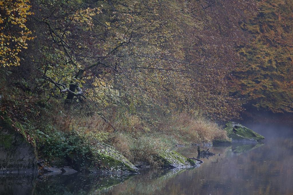 lahnwanderweg_trail6_57