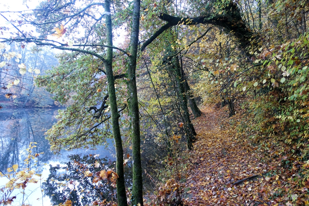 lahnwanderweg_trail6_6