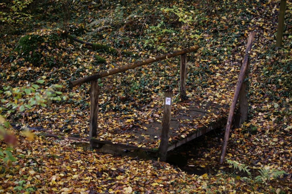 lahnwanderweg_trail6_64