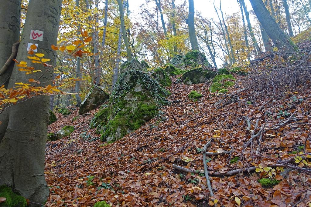 lahnwanderweg_trail7_13