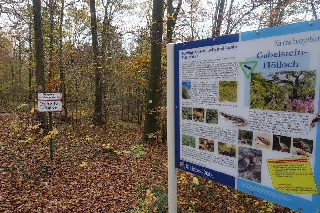 lahnwanderweg_trail7_19