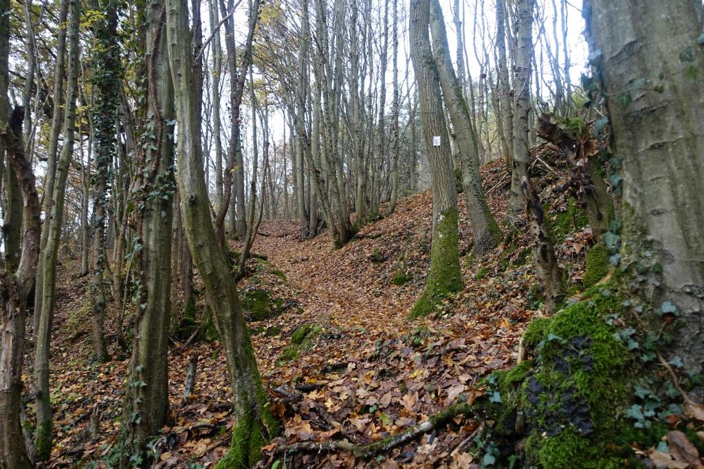 lahnwanderweg_trail7_20