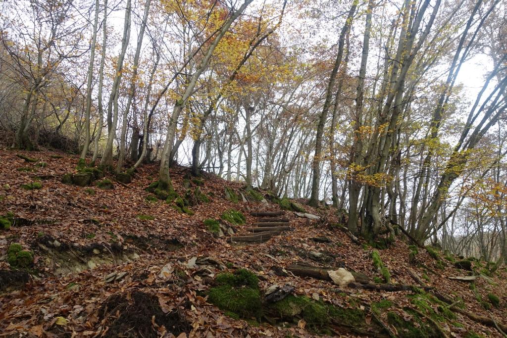 lahnwanderweg_trail7_21