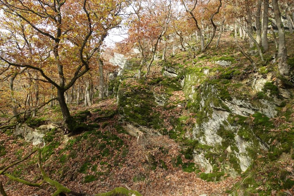 lahnwanderweg_trail7_24