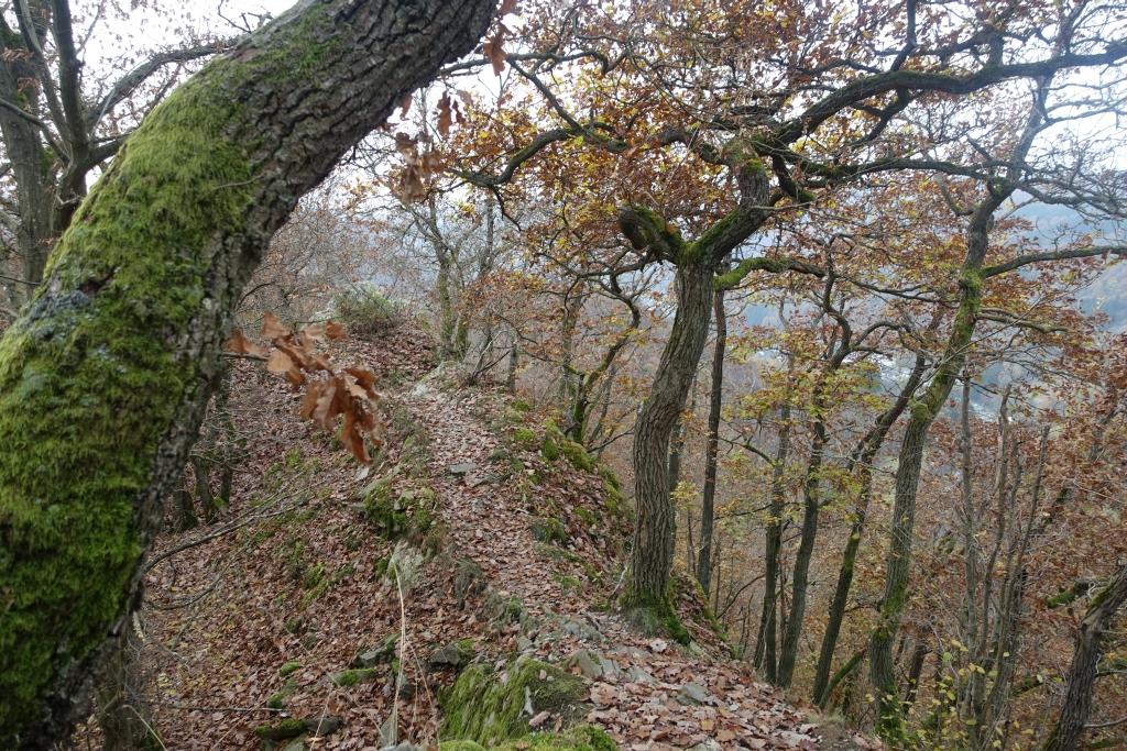 lahnwanderweg_trail7_29