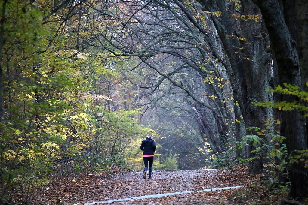 lahnwanderweg_trail7_42