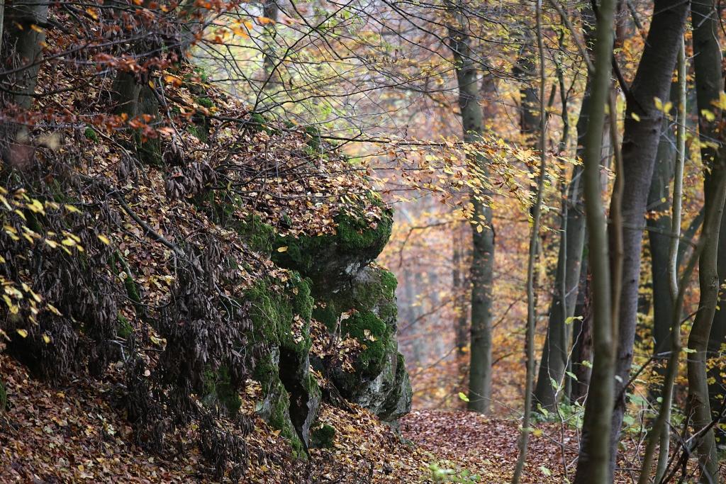 lahnwanderweg_trail7_50