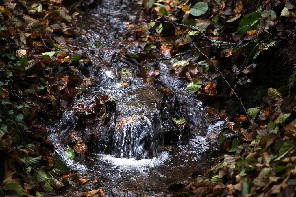 lahnwanderweg_trail7_54