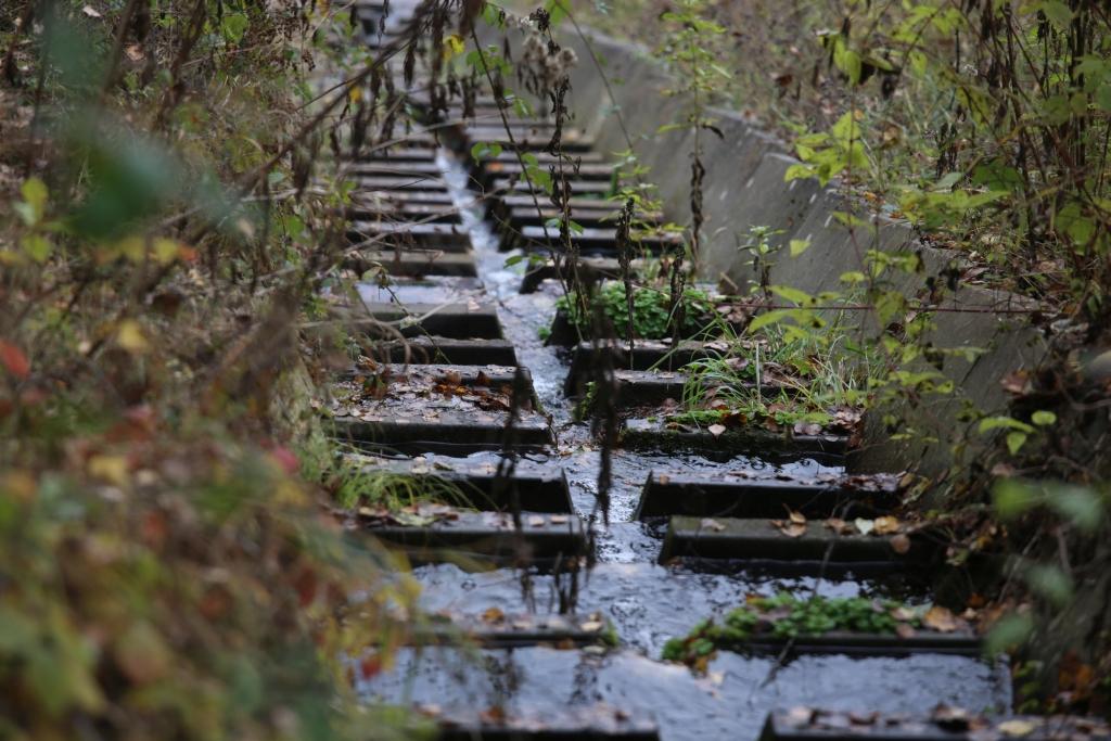 lahnwanderweg_trail7_60