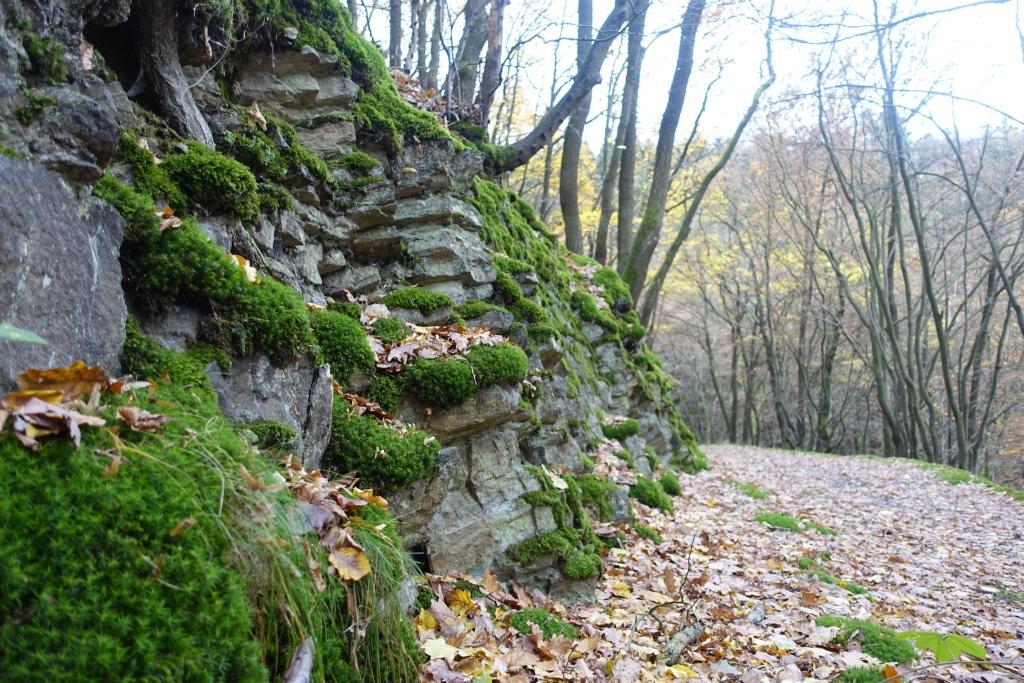 lahnwanderweg_trail8_10
