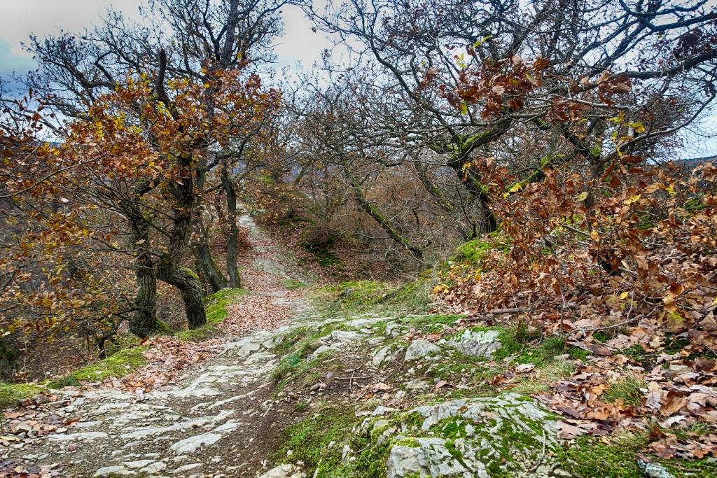 lahnwanderweg_trail8_14