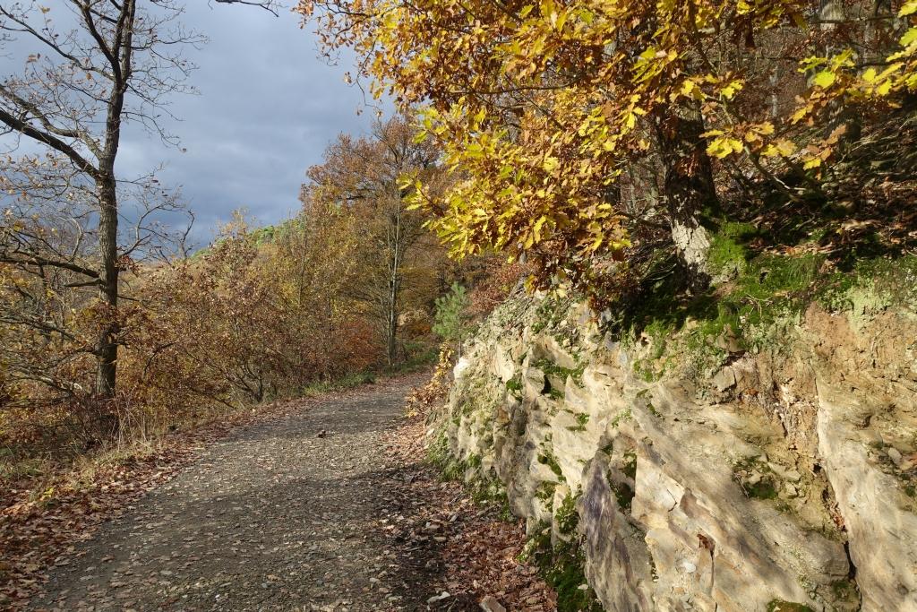 lahnwanderweg_trail8_30
