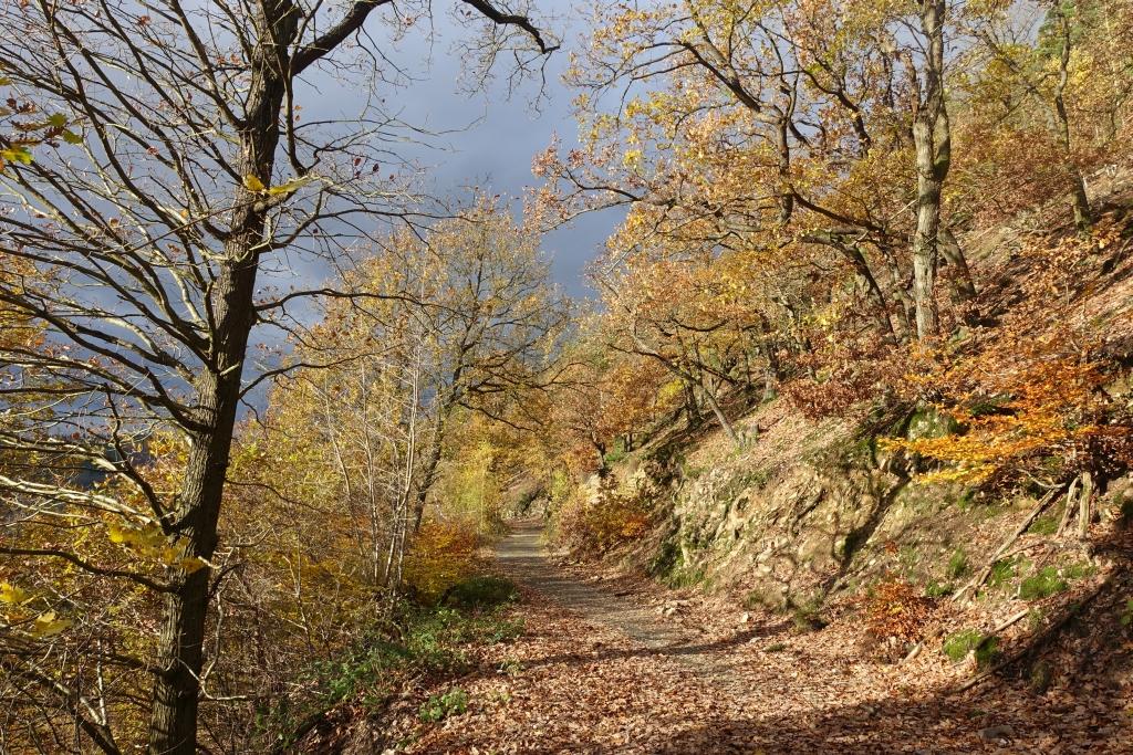 lahnwanderweg_trail8_32