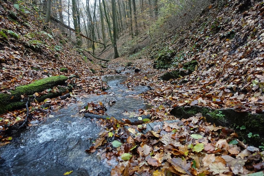 lahnwanderweg_trail8_34