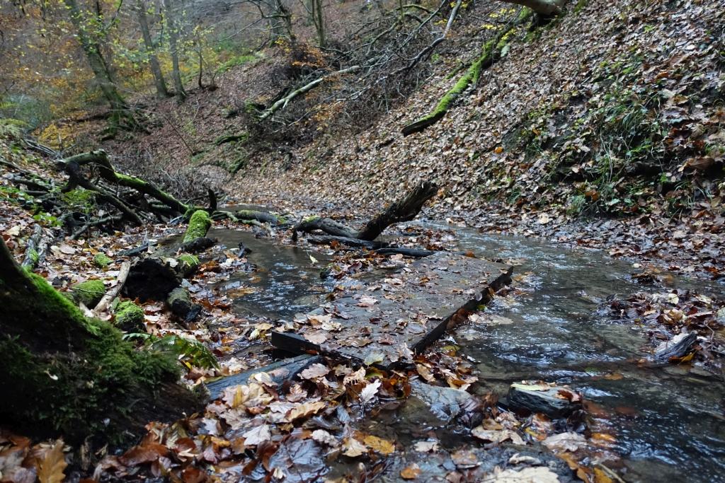 lahnwanderweg_trail8_35