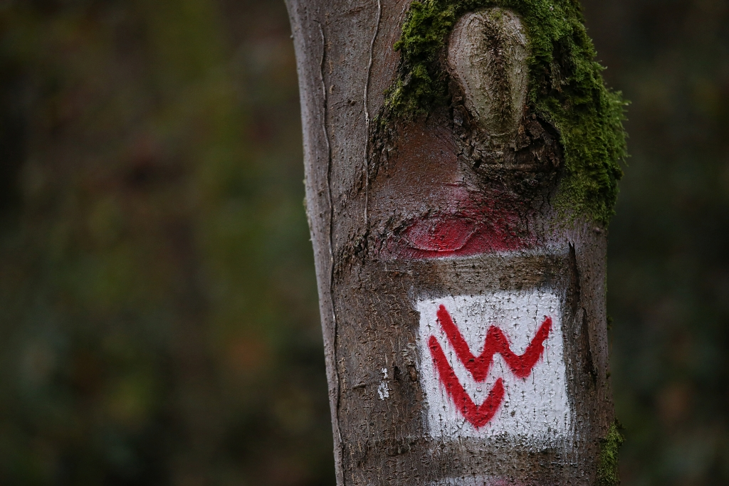 lahnwanderweg_trail8_49