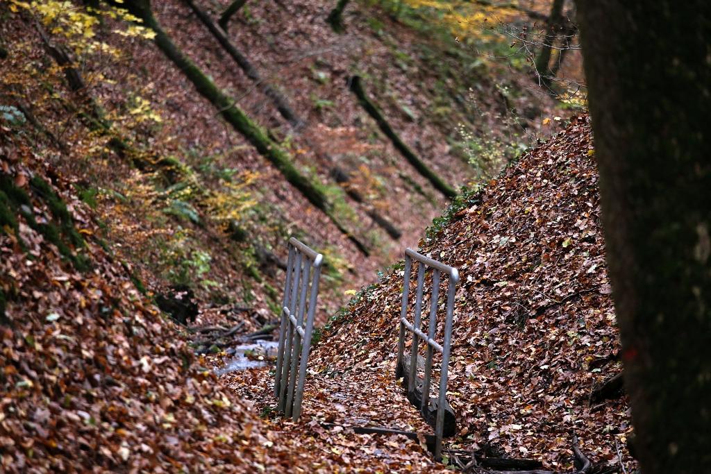 lahnwanderweg_trail8_76